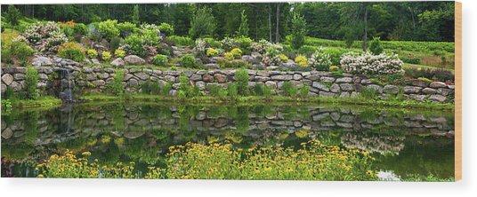 Rocks And Plants In Rock Garden Wood Print