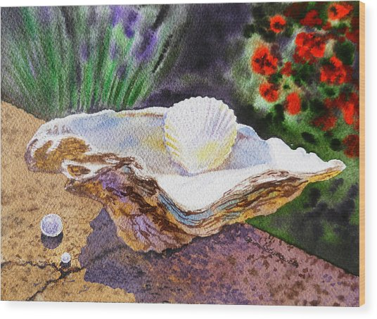Sea Shell And Pearls Morning Light Wood Print