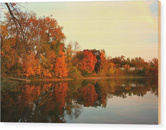Shady Oak Lake  Wood Print