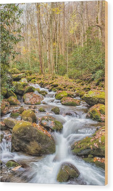 Smoky Mountain Stream 1 Wood Print