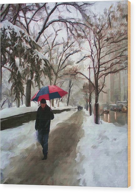 Snowfall In Central Park Wood Print