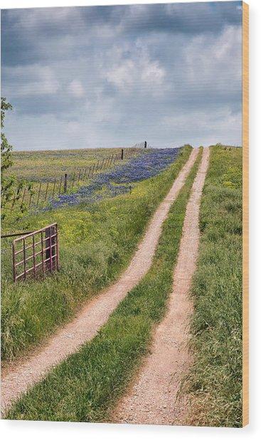Texas Bluebonnets 1 Wood Print
