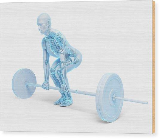 Weight Training Posture Wood Print by Sebastian Kaulitzki