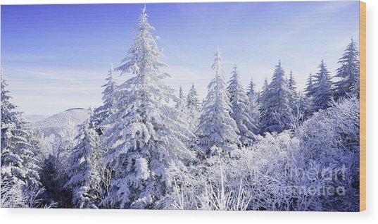 Winter Along The Highland Scenic Highway Wood Print