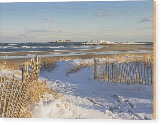 Winter At Popham Beach State Park Maine Wood Print