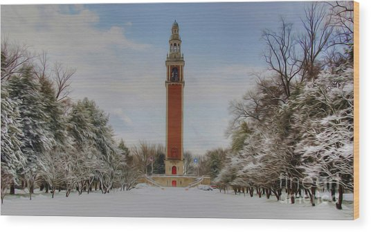 Winter At The Carillon Wood Print