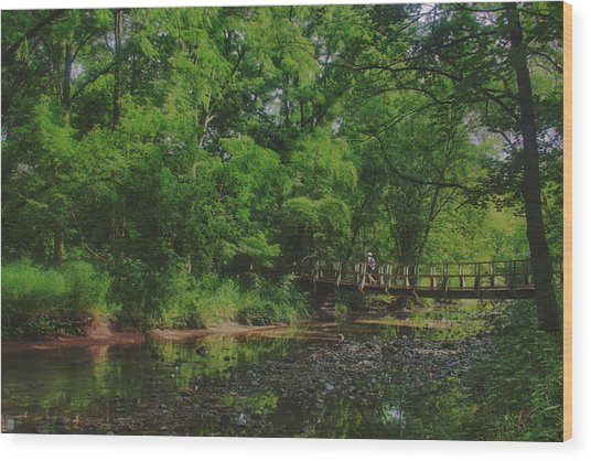 40 Mile Creek  Wood Print by Dan  Copeland