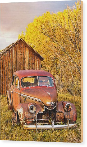 46 Chevy In The Weeds Wood Print
