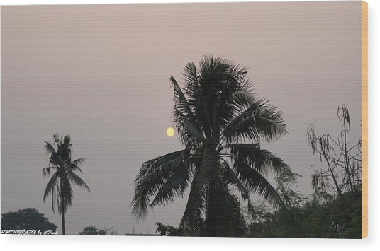 Beautiful Evening Wood Print by Gornganogphatchara Kalapun