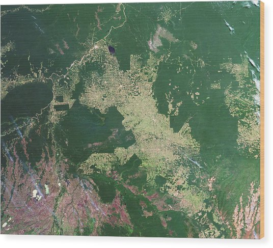 Deforestation In The Amazon Wood Print by Nasa Earth Observatory