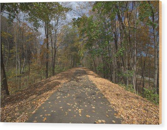 Fall In Upstate Ny Wood Print by Edward Kocienski