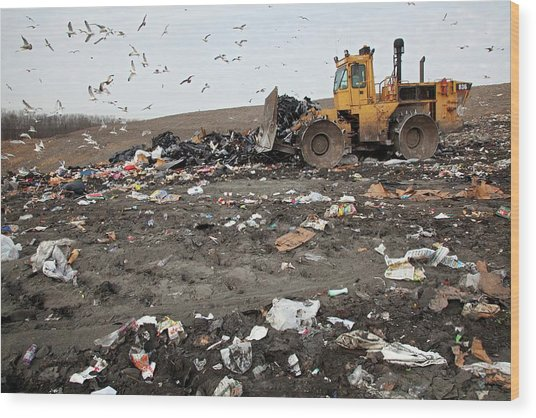 Landfill Site Wood Print by Jim West