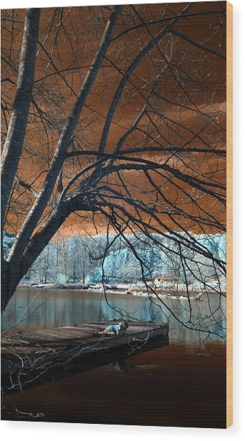 Quiet Moments Wood Print