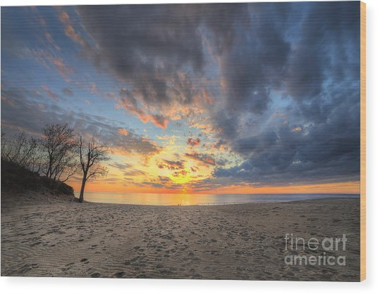 Warren Dunes State Park Wood Print by Twenty Two North Photography