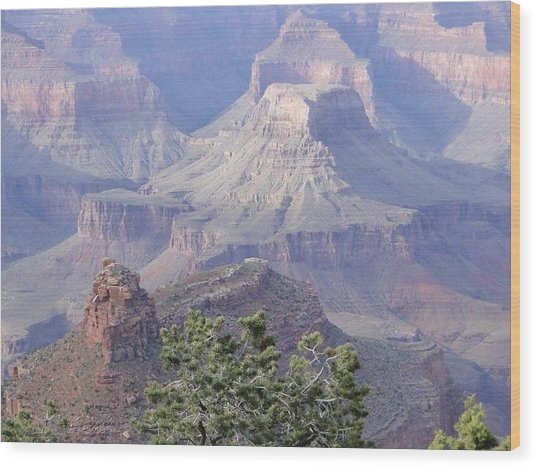50 Shades Of Purple In The Grand Canyon Wood Print
