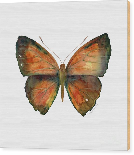 56 Copper Jewel Butterfly Wood Print