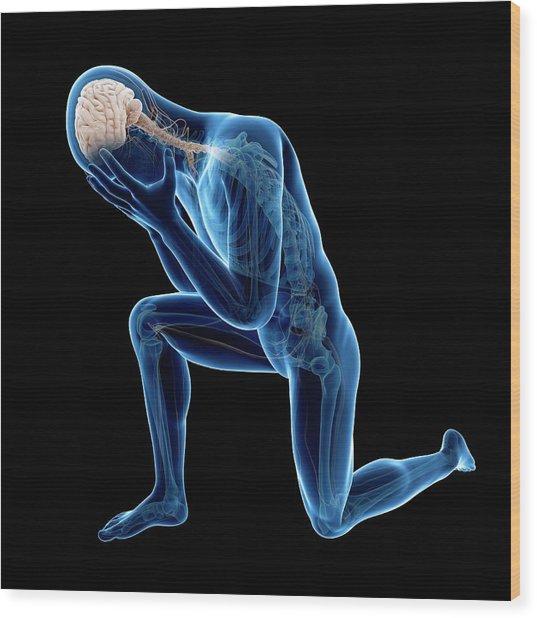 Human Nervous System Wood Print by Sebastian Kaulitzki