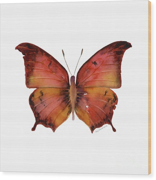 58 Andria Butterfly Wood Print