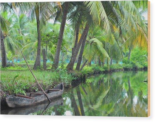 Asia, India, Kerala (backwaters Wood Print