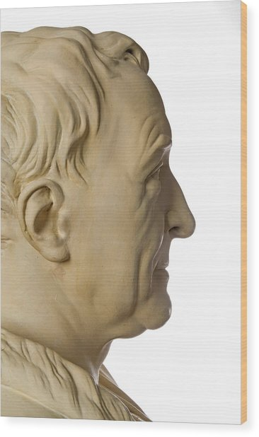 Carl Linnaeus Wood Print by Natural History Museum, London/science Photo Library
