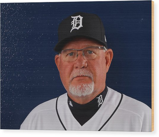 Detroit Tigers Photo Day Wood Print by Kevin C. Cox