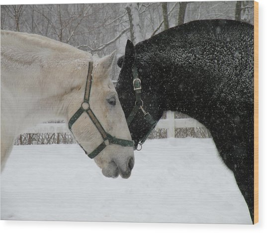 Nh Mounted Police Horses Wood Print