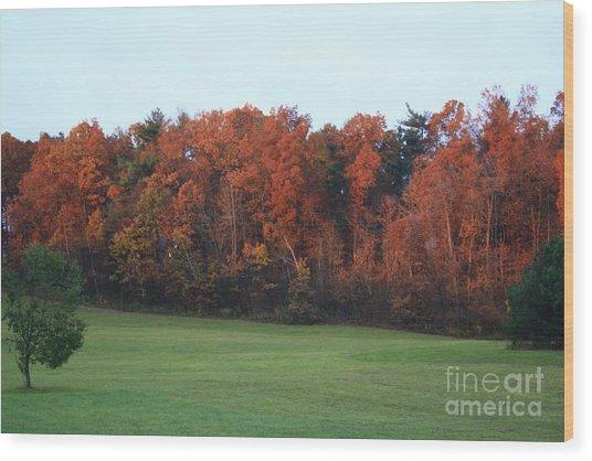 Landscape Wood Print by Arelys Jimenez