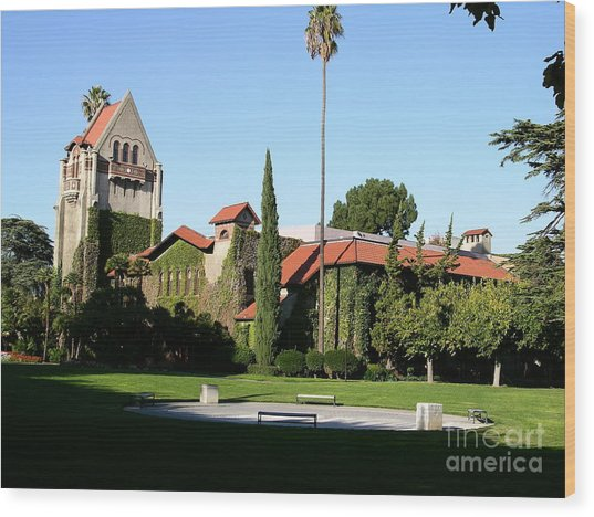 San Jose  Wood Print