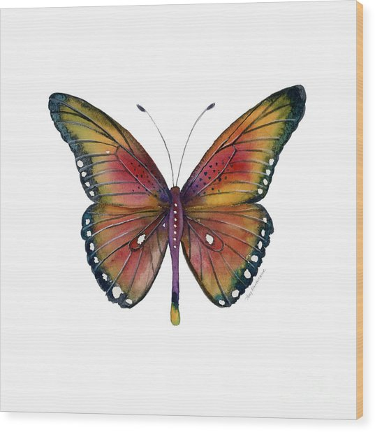 66 Spotted Wing Butterfly Wood Print