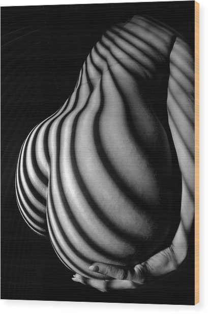 6777 Black White Nude Womans Curves Striped With Sunlight  Wood Print