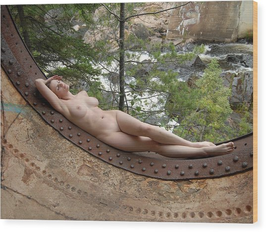 6893 Industrial Odalisque Nude In Nature Wood Print