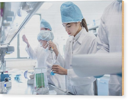 Scientists Working In Lab Wood Print by Science Photo Library