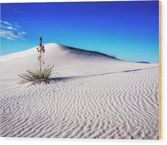 Usa, New Mexico, White Sands National Wood Print by Terry Eggers