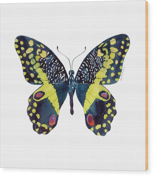 73 Citrus Butterfly Wood Print