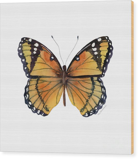 76 Viceroy Butterfly Wood Print
