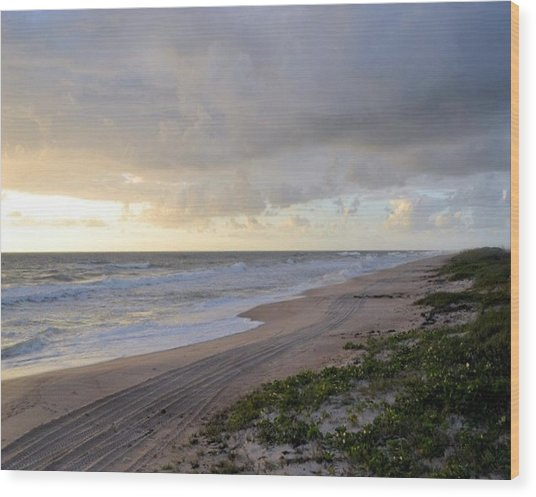 Beach Wood Print by William Watts