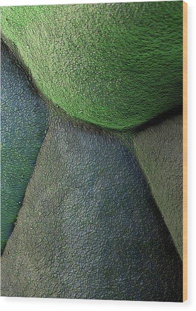 Broccoli Wood Print by Stefan Diller