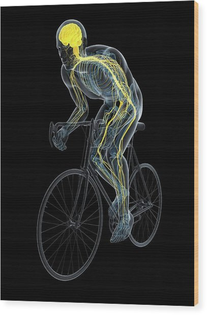 Cyclist Wood Print