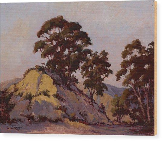 Ridge Eucalyptus Wood Print