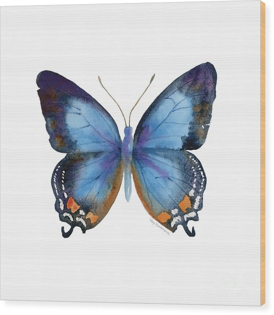 80 Imperial Blue Butterfly Wood Print