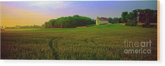 Conley Road, Spring, Field, Barn   Wood Print