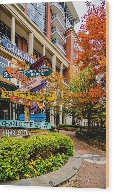 Charlotte City Skyline Autumn Season Wood Print