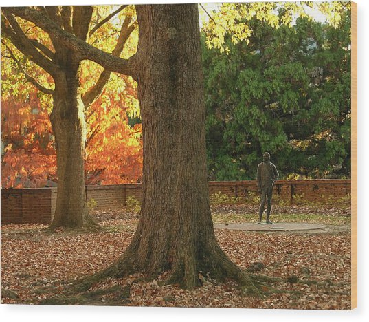 William And Mary College Wood Print