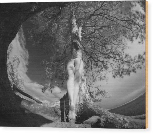 9102 Tree Of Life Nude By Pine Wood Print