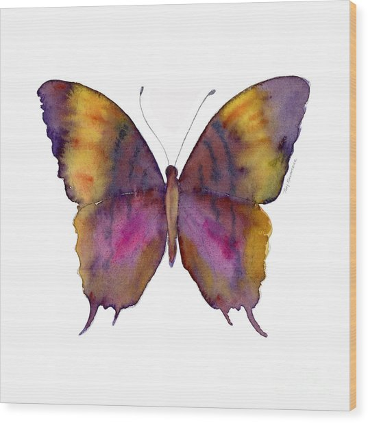 99 Marcella Daggerwing Butterfly Wood Print
