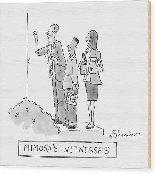 Mimosa's Witnesses Wood Print