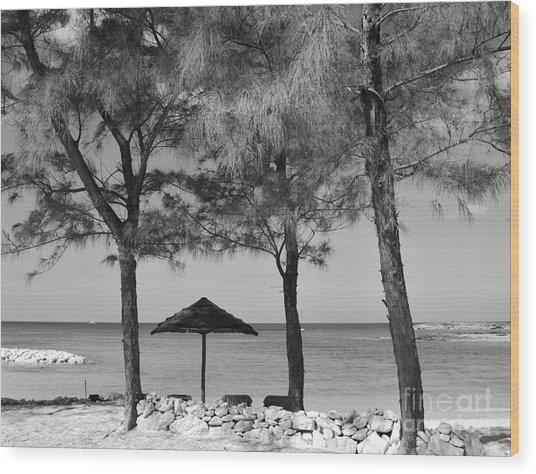 A Bahamas Scene In Black And White Wood Print