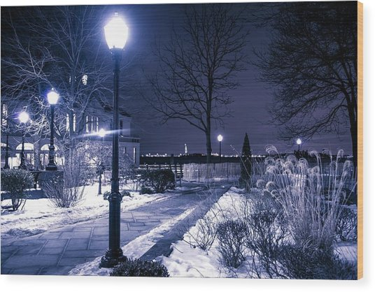A Battery Park Winter Wood Print