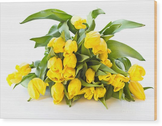 A Beautiful Yellow Tulips Wood Print by Boon Mee