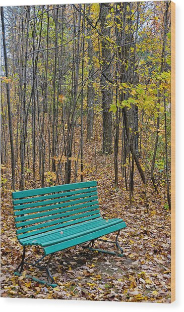 A Bench Nowhere... Wood Print